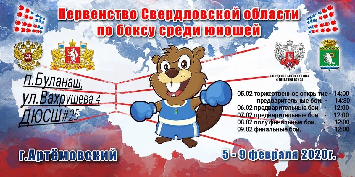 Первенство Свердловской области по боксу среди юношей